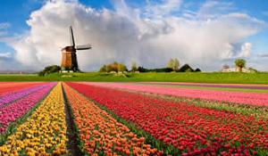 landpagina_nederland